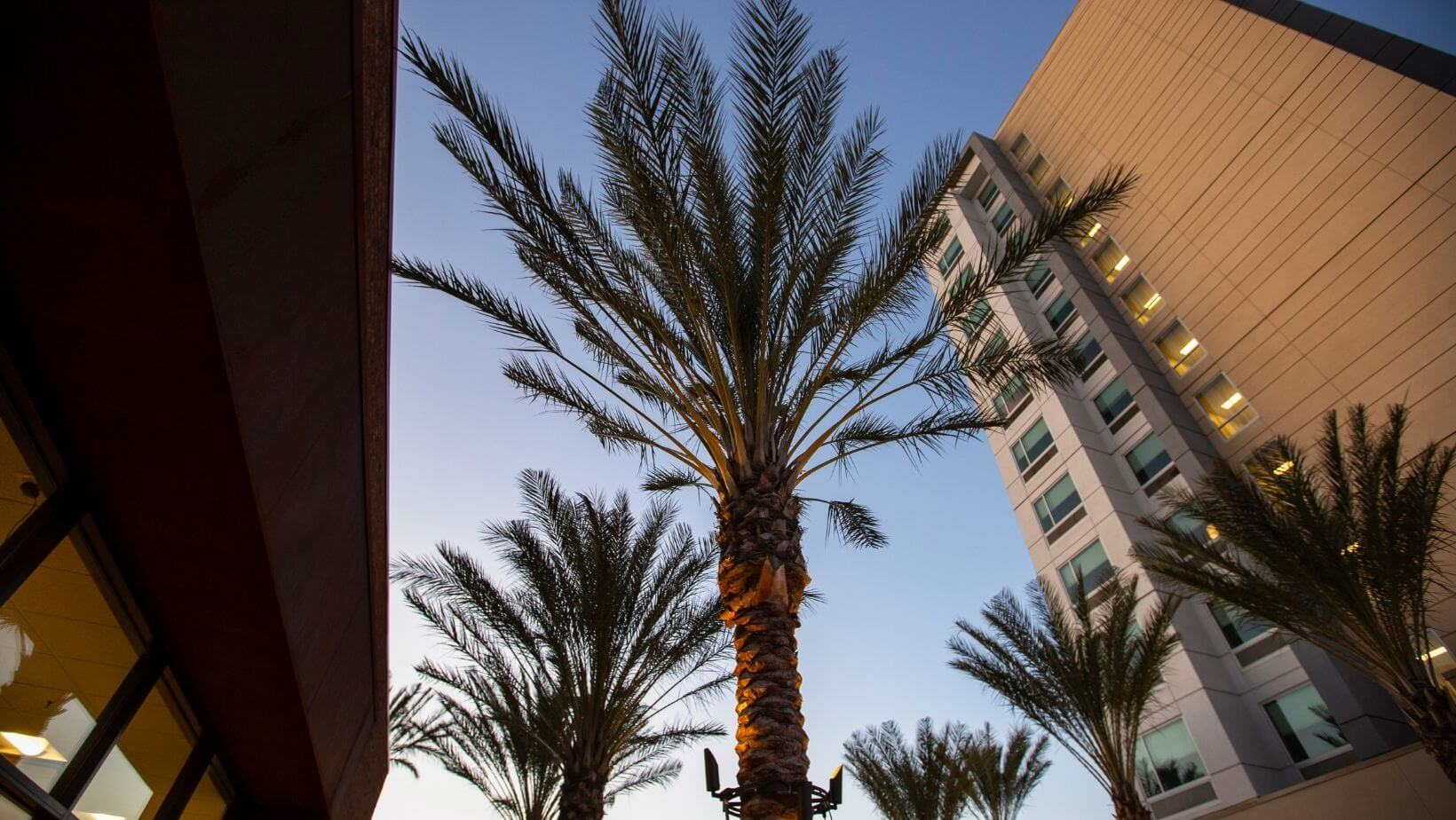Serving Anaheim for Awnings and Shades Needs
